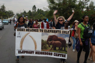 Protest stalwart Christina Pretorius, IFAW Communications Lead for Elephants, gets in the spirit during the final stages of the Ivory Belongs to Elephants Only march in Nairobi, Kenya. Picture Andreas Dinkelmeyer/IFAW