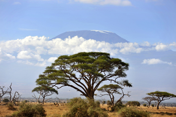 With the fast changing world, the Maasai of Amboseli are at a crossroads.