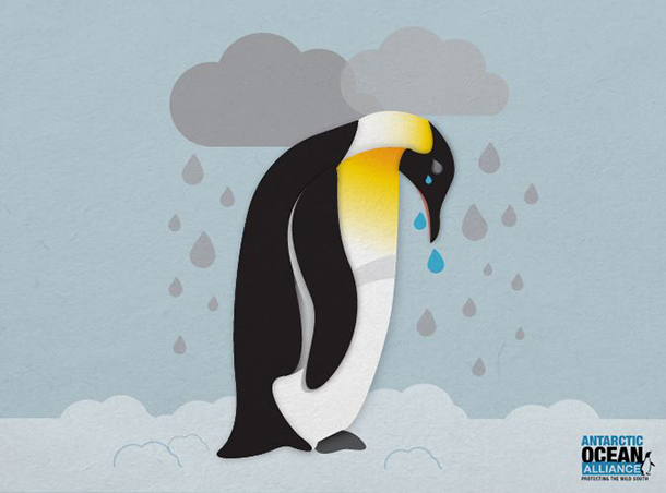 Percy is devastated because his home in Antarctica's Southern Ocean has been left unprotected again.