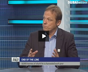 The author talking with Dubai's TV ONE about the crisis facing the world's sharks. Click on the link to watch the video.