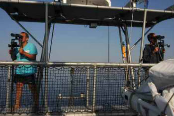 Members of the team searching for porpoises on the primary observation platform.