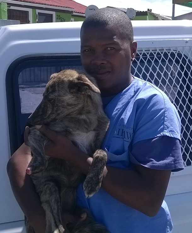 Stompie won animal welfare assistant Lazola Sotyingwa's heart, and now lives happily with Lazola and her family.