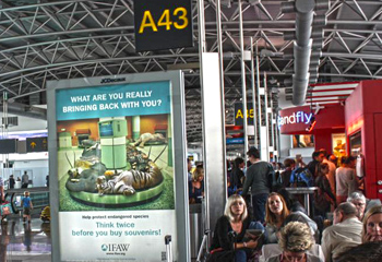 A picture of the IFAW Think Twice campaign signage in the Brussels airport.