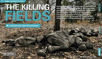 Click here to view the 'Killing Fields' feature
