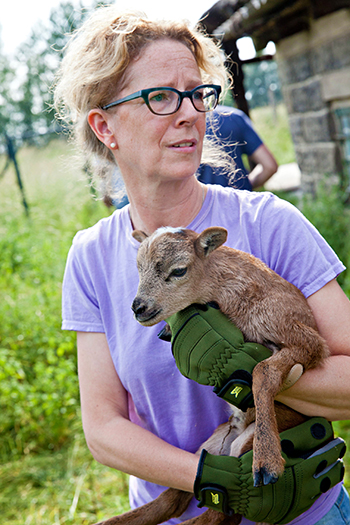 Susanne in our Germany office holding a goat, rescued during the recent flooding