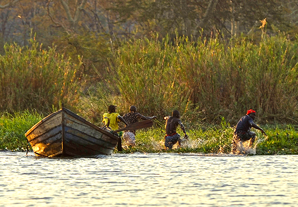Poachers who had been illegally fishing on the Shire River in Malawi's Liwonde National Park retreat at the sight of park rangers.