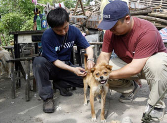 In China, vaccinating dogs can save lives