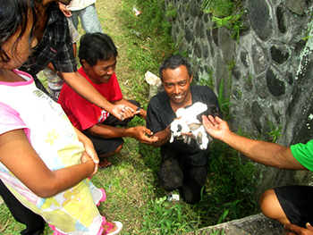 Community members rejoice as mother and pups are rescued.