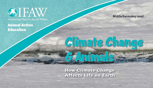 Download IFAW Climate Change & Animals materials using the link below.