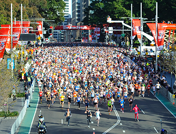 For the first time, IFAW has partnered with City2Surf and is offering a limited number of Gold Charity entry positions available to supporters who commit to raising at least $1,000 for our cause.