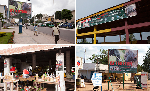 IFAW billboards, posters and banners in Congo's capital Brazzaville and Northern city of Ouesso. (C) IFAW.