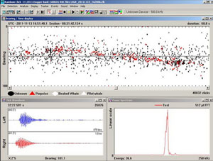 Computer screen grab of Harbour porpoise clicks: Showing HP clicks detected during the Dogger Bank survey. The red triangles show each click and a clear bearing can be seen as the porpoise passes.