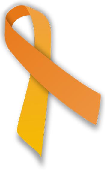 Harmony Day Ribbon Photo:Wikimedia