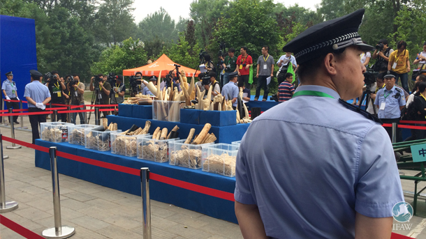 During an event back in May 2015 when China crushed 662 kg of confiscated ivory, the government had originally made its pledge to work toward banning all domestic ivory trade in the country.