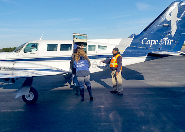 We were able to procure a special chartered plane through Cape Air leaving Hyannis for the 20-minute flight over to the island.