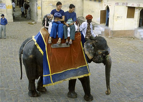 Toeristen maken een ritje op een olifant in India