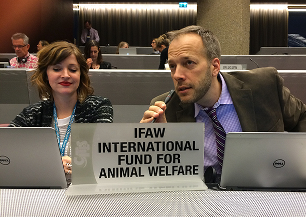 The author and Staci McLennan, IFAW's EU Political Officer, Wildlife Programmes, at the recent standing committee meetings in Geneva.