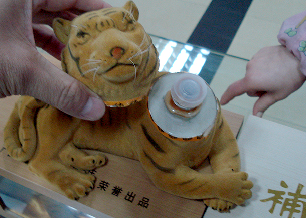 The government austerity campaign needs to ban official gifting and receiving gifts made from wildlife, such as tiger bone wine, ivory and rhino horn carvings.