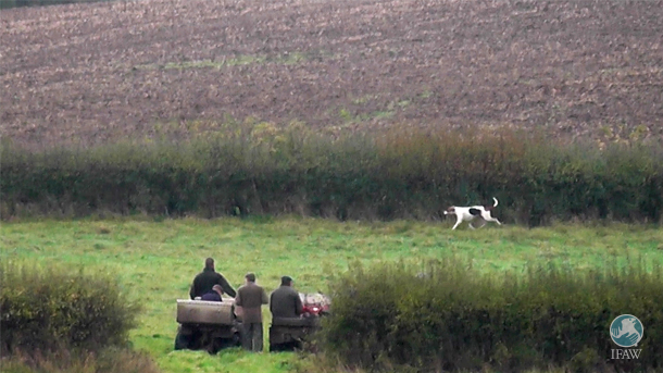 Terriermen on quadbikes during a supposed trail hunt.