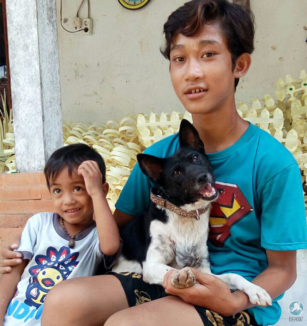 Putu Kartama Yasa and son Kadek (pictured holding Spirit) finally adopted this dog from Bali