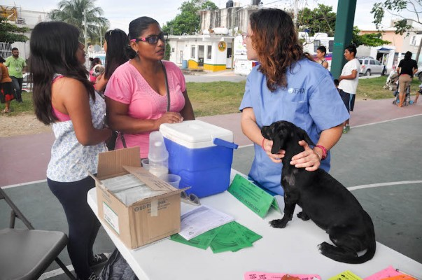 Outreach allows us to not only provide aid to dogs and cats that urgently need it, but also meet their owners face to face.