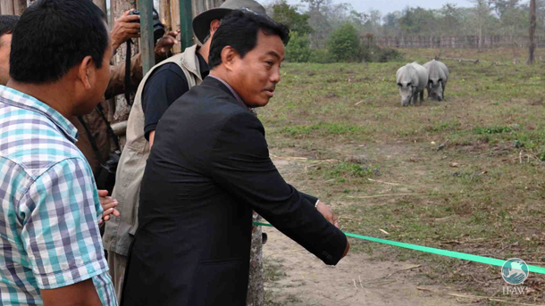The Deputy Chief of the Bodoland Territorial Council (BTC), Kampa Borgoyary, cut the green ribbon across the boma to release the rhinos.