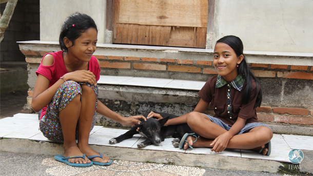 Rita and Yuni took every precaution to keep their dog Popo healthy, including getting her spayed by IFAW-supported Bali Animal Welfare Association (BAWA) veterinarians at a local clinic.