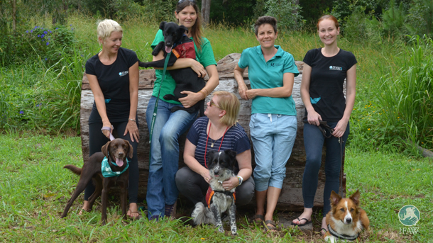 The Detection Dogs for Conservation team includes (L-R) the author (IFAW), Romane, Kate and Celine (Uni) and Naomi (IFAW) with dogs (L-R) Archie, Billy, Maya and Baxter.
