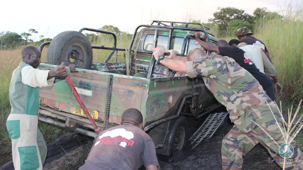 The IFAW Commando Unit and Malawi Rangers work hand in hand to get the vehicle moving and into areas where poaching is likely to occur.
