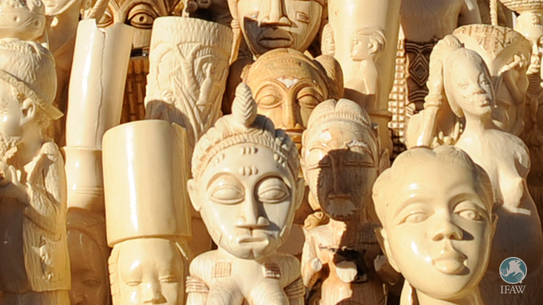 Of the dealers surveyed in a Portsmouth University report on the antiques industry, 41 percent only sold between one and 20 items of ivory per year.