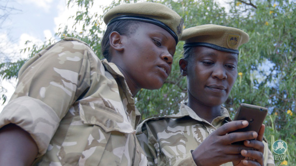 KWS field rangers have been trained in the tradecraft of intelligence, analysis, predictive modeling, and investigation.