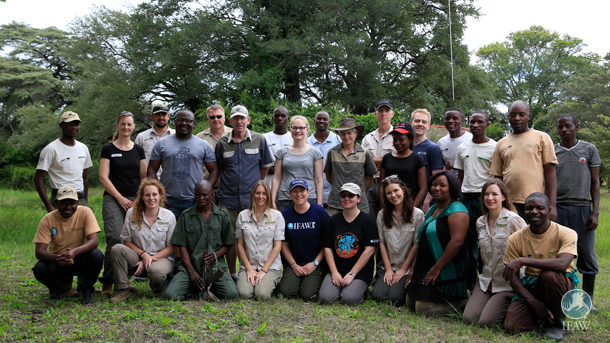 The team that successfully collared five of the orphan elephants.