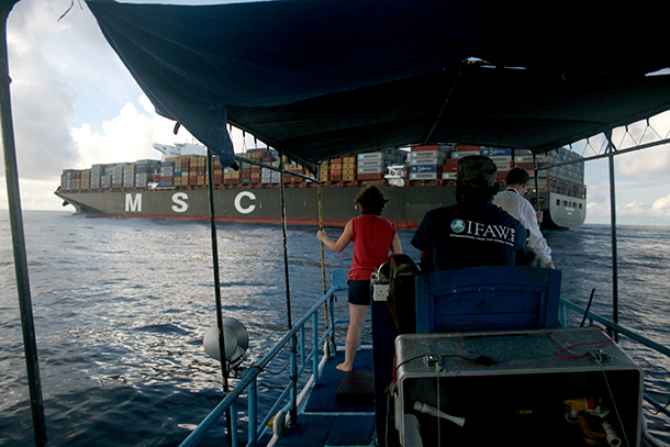 The surveys frequently had to be suspended to allow ships to pass. Here the team wait as the 400m long MSC New York, one of the world's largest container ships, goes by.