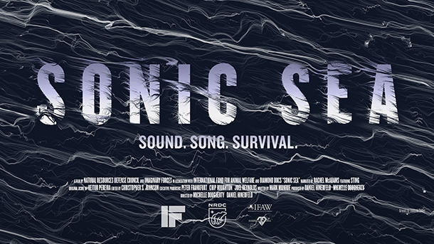 Ocean noise film Sonic Sea premieres tonight on Discovery
