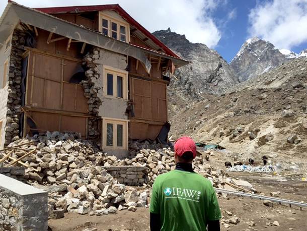 Several lodges and houses were damaged but luckily the resident dogs and yaks are faring well.