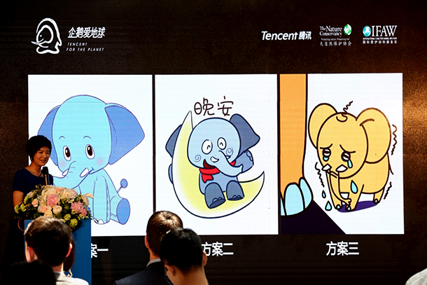 The host, Quanling ZHANG, one of the most famous TV anchors in China, launches the public vote for project-themed elephant Wechat emoji.