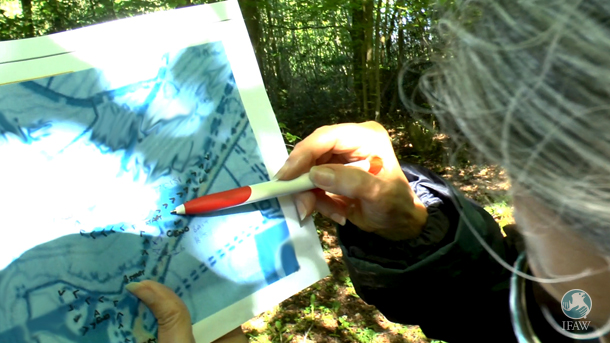 One of the badger protectors checking a map as part of an exercise during Wounded Badger Patrol training in May 2016 by GABS
