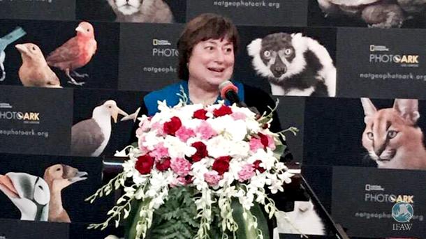 After Under Secretary of State for Economic Growth, Energy, and the Environment Catherine Novelli announced the new US rules last week, she was at the IFAW co-sponsored event in Beijing.
