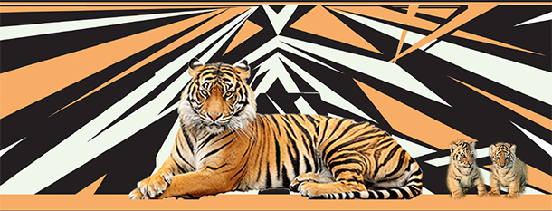 Artist and advocate Damon Martin unveiled a powerful mural depicting an adult tiger and cubs.