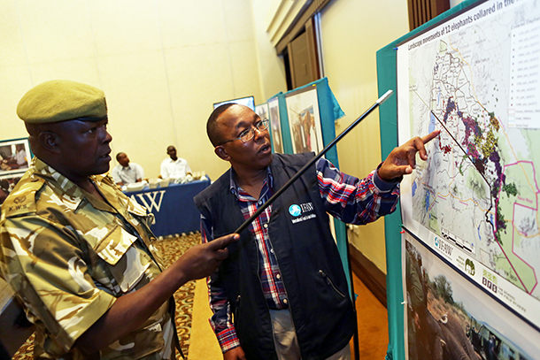 Evan Mkala (left), IFAW Amboseli Project Officer explain elephant movement maps to Patrick Mulandi Capture Warden KWS