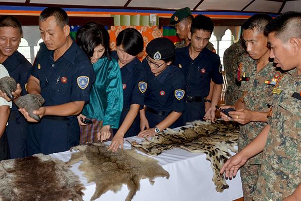 Examination of a variety of wildlife goods