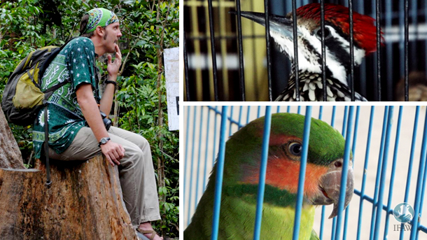 Adam Miller's Planet Indonesia's bird monitoring project was one of 16 prize winners selected from more than 300 innovations from more than 50 countries entered into the Wildlife Crime Tech Challenge.