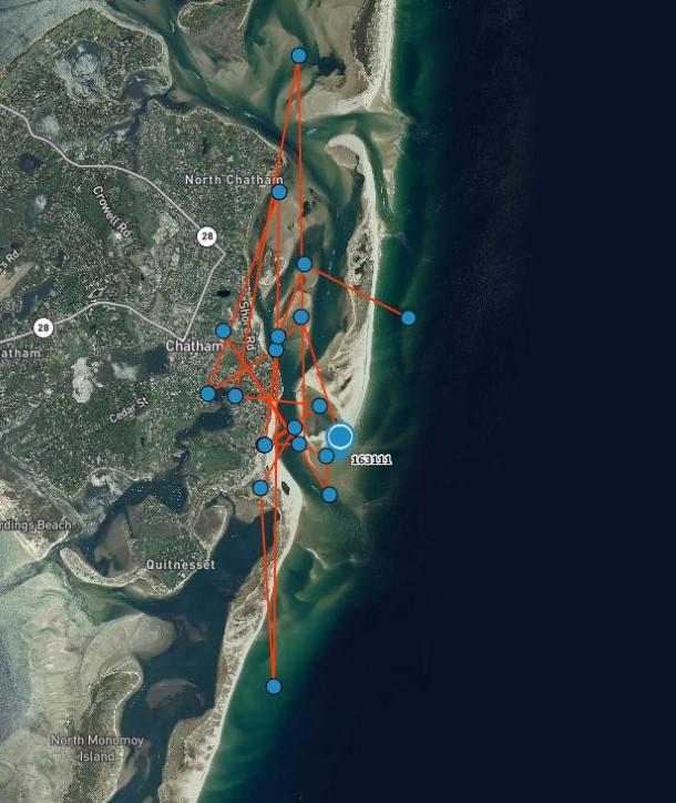 De gegevens tonen aan dat Sausalito dichtbij de haven van Chatham is gebleven na haar redding