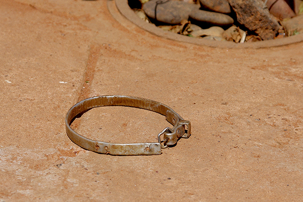 A forlorn collar is all that remains to remind the family of the dog who's gone.