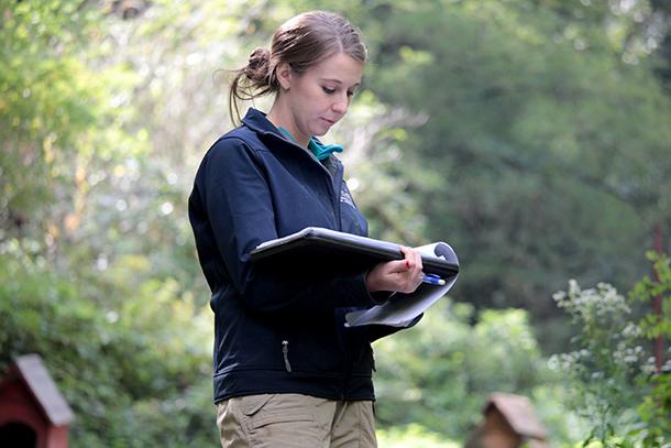 La chargée de campagne d'IFAW, Ellie Milano, repertorie les chiens avant leur transport.