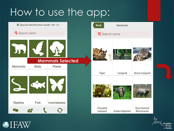 Authorized users can navigate the species guide with a touch of the finger.