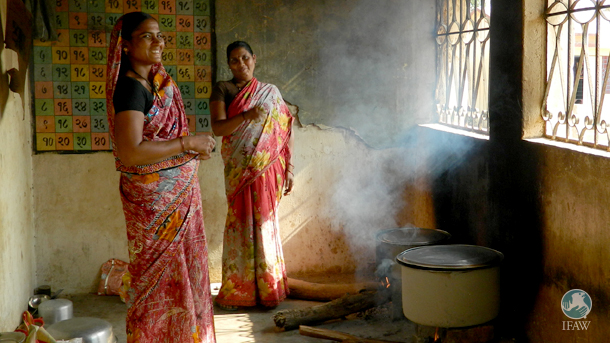The new more efficient, cleaner burning stoves not only burn less wood than the traditional stoves (pictured), but do not fill a home's kitchen with smoke like the traditional ones. PHOTO: © IFAW-WTI
