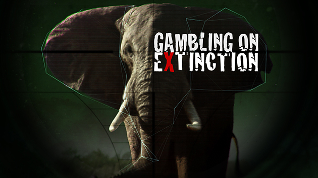 Der letzte Raubzug – eindrucksvoller Dokumentarfilm über den illegalen Wildtierhandel