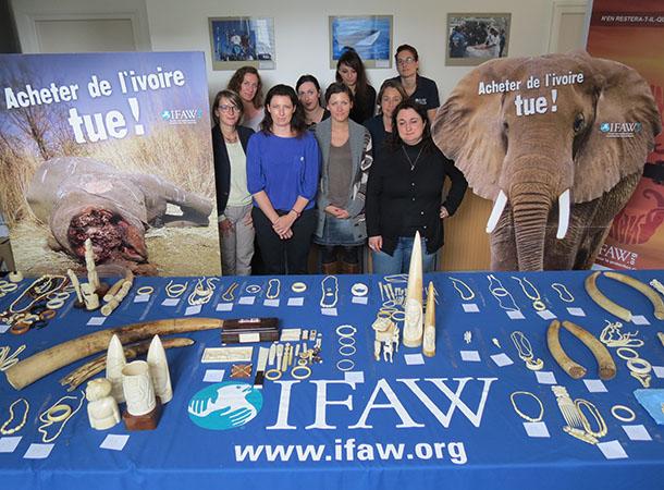 257 objets en ivoire cédés par des particuliers dans le cadre de l'opération expérimentale 'Je donne mon ivoire' ont été détruits