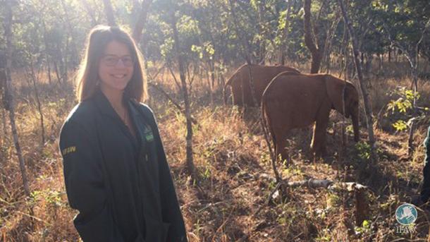 Auteur Lina Schaefer met weesolifanten in Zambia